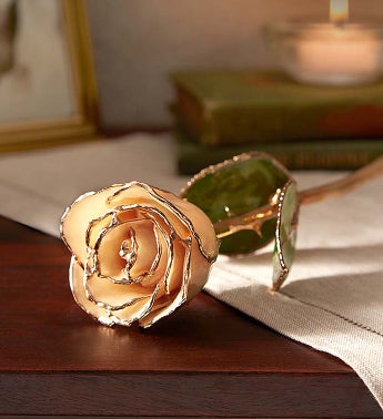 24K Gold Rose for Sympathy