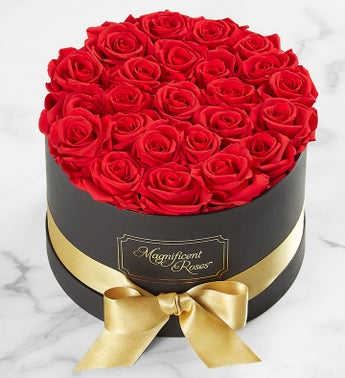 Magnificent Roses Preserved Red Roses with Gold Ribbon